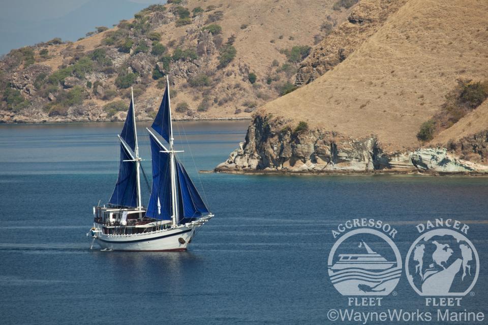 Komodo Dancer Boat Photo