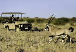 Kalahari Plains Camp Photo