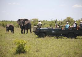 &Beyond Ngala Safari Lodge Photo