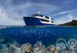 Raja Ampat Boat Photo